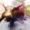 Bull Market_Arlene Sopranzetti_Assigned B Americana_Honorable Mention