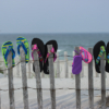 Flip Flops_Arlene Sopranzetti_Open B_Honorable Mention