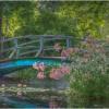 Grounds for Sculpture Japanese Garden Bridge_Ellen Stein_Assigned A Bridges_Equal Merit