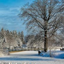 Roosevelt Park Walking Bridge_Christine Cuthbertson_Assigned Salon Bridges_Honorable Mention