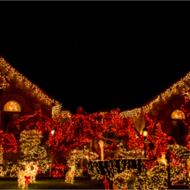 Happy Holidays!_Christine Cuthbertson_Assigned Salon Night Photography_Honorable Mention