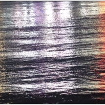 Refections on the Water_Wendy Kaplowitz_Open B_Honorable Mention