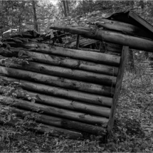 Leanto Cabin from the 1920s_Lisa Blake_Open B_Equal Merit