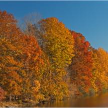 Autumn At Nockamixon_Ron Denk_Assigned Salon Landscapes_Honorable Mention