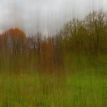 Autumn Rain_Arlene Sopranzetti_Assigned A Landscapes_Honorable Mention