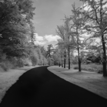 Duke Farms_Sherryl Gilfillian_Assigned A Landscapes_Equal Merit