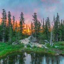 Morning Blaze_Christine Truhe_Assigned B Landscapes_Equal Merit