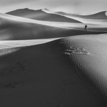 Mr. Sandman_Barbara Martens_Assigned B Landscapes_Equal Merit