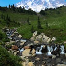 Summer At Mt Rainer_Brenda Calinawan_Assigned B Landscapes_Honorable Mention