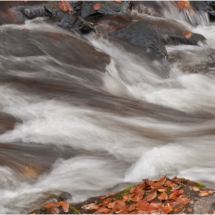Cascading Waters_Ron Denk_Assigned Salon Water_Honorable Mention