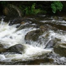 Rushing Water_Wendy Kaplowitz_Assigned B Water_Honorable Mention
