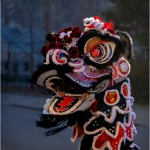Lion Dancer in Black_Ellen Stein_Open Salon_Honorable Mention