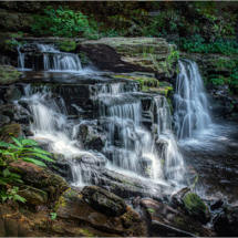 Ricketts Glen Cayuga Falls_Ellen Stein_Open Salon_Equal Merit