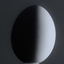 Egg_Sherryl Gilfillian_Assigned A Macro & CloseUp Food_Honorable Mention