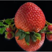 Strawberry_Lenny McDonald_Assigned B Macro & CloseUp Food_Equal Merit
