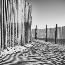 Sticks and Sand_Charlene Federowicz_Assigned B Patterns & Textures_Equal Merit