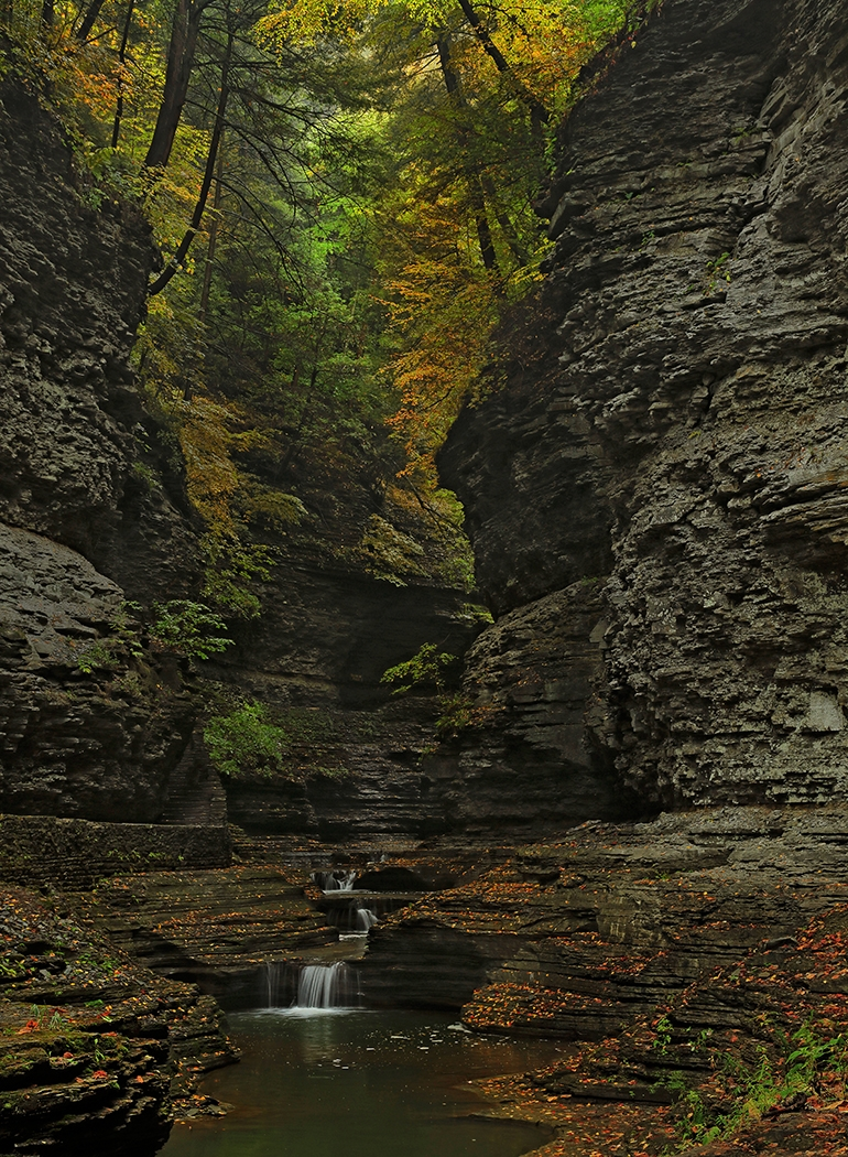 Image of the Month - Salon - Watkins Glen by Nick Palmieri
